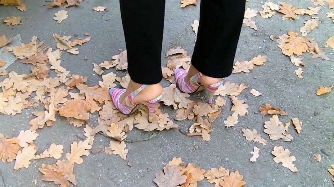 Colored Slingpumps (13cm) (1) in autumn